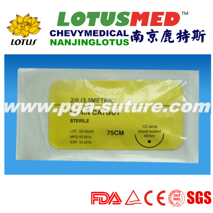 Absorbable China made Plain Catgut suture with needle