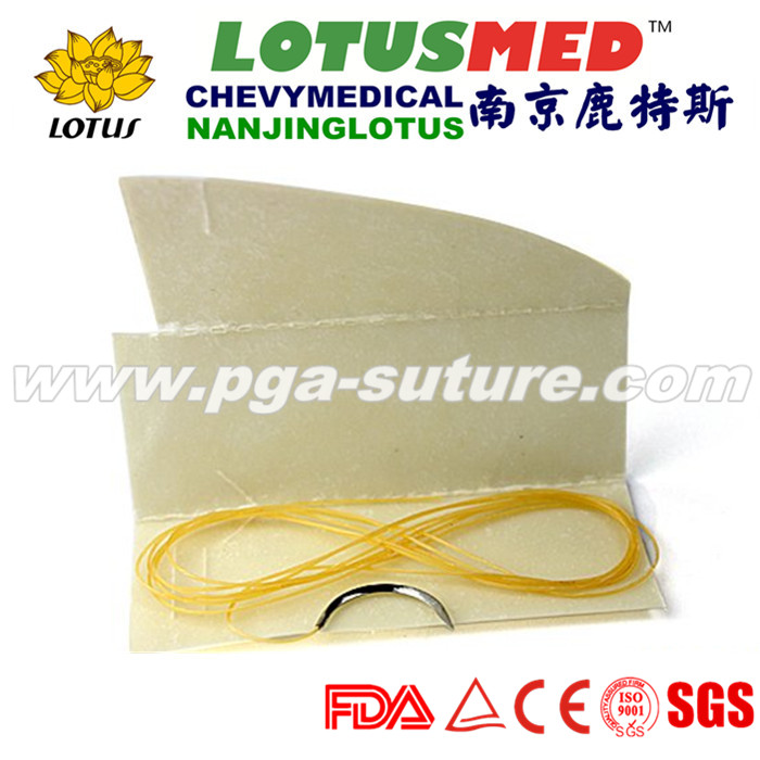Natural Absorbable Plain Catgut Suture in Medical and Healthy L01097