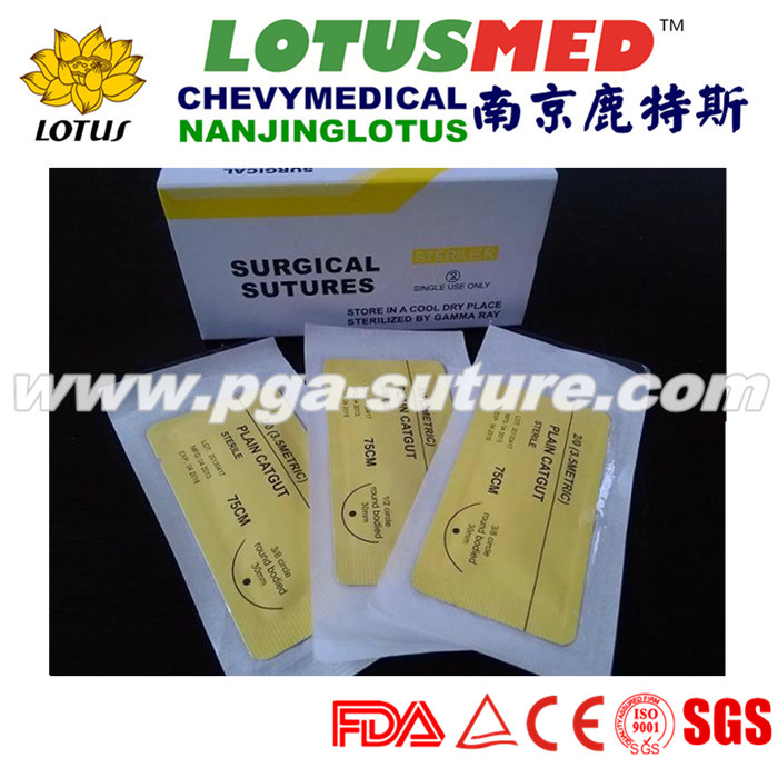 Absorbable surgical sutures plain catgut suture