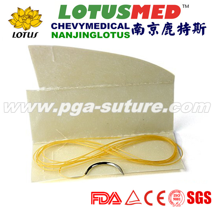 Hot Sleas Plain Catgut sutures with/without needles